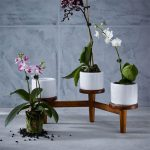 Midcentury turned leg tabletop planter at West Elm
