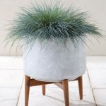 Midcentury-style concrete planters at Next