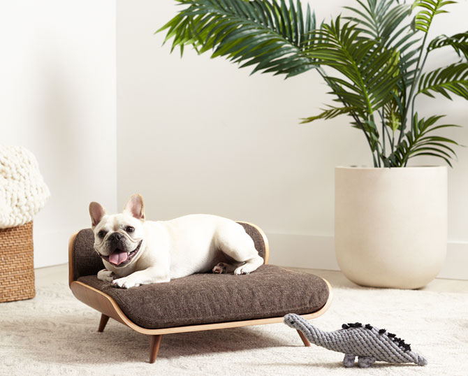 Retro pets: Midcentury dog and cat beds by Cairu Design