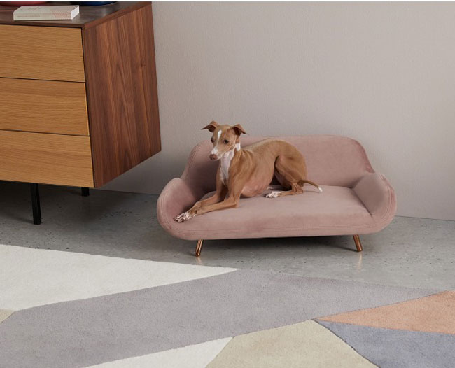 Moby midcentury modern pet sofas at Made