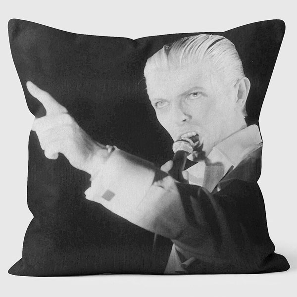 14. Mirrorpix Thin White Duke cushion