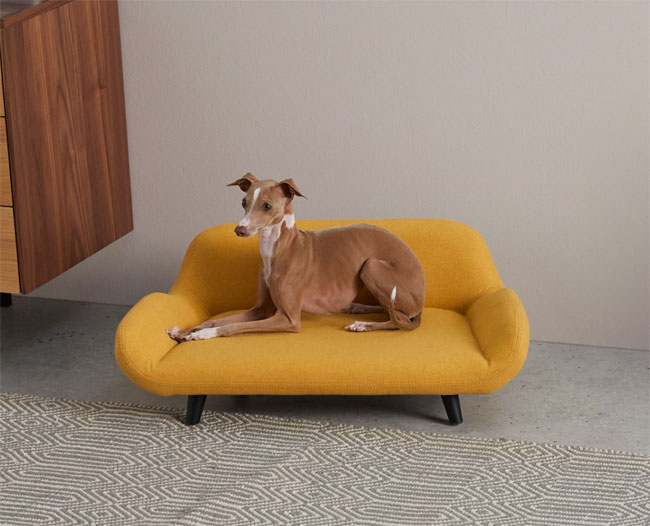 6. Moby midcentury modern pet sofa at Made